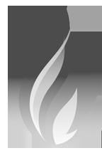 SIMPLIFIER NET - Core SearchParameters - DSTU2